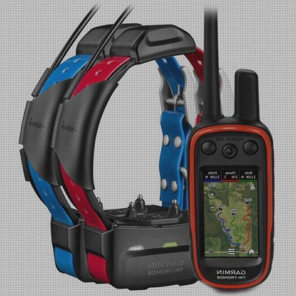 Review de collar perro gps garmin